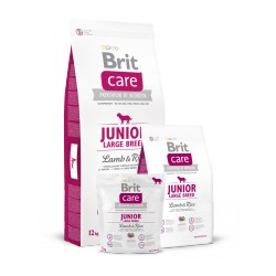 Brit Care lam junior